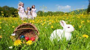 Caccia alle uova di Pasqua!